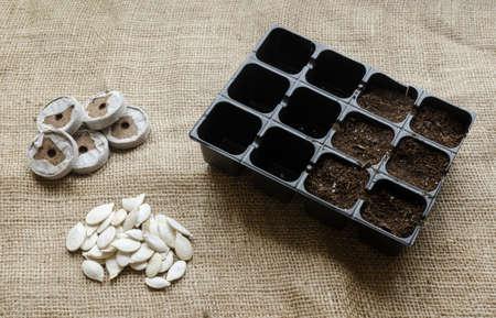 seeding: Seeding tray