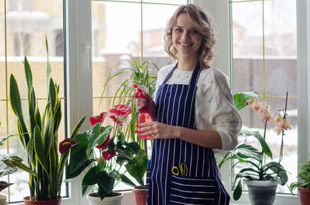 Young woman cultivating home plants Standard-Bild