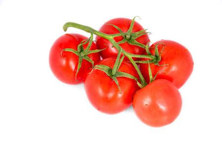 Tomato branch isolated on white background Zdjęcie Seryjne