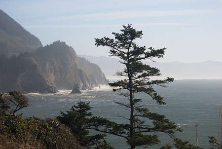 waves breaking on the dramatic Oregon Coast in Ecola State Park Stock Photo