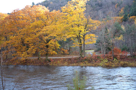 West River, near Townshend, Vermont in Autumn