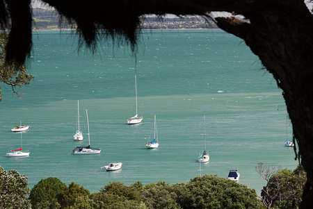 Waiheke Island, New Zealand Harbor from Kennedy Point Winery Stock Photo
