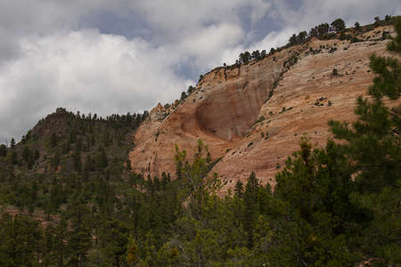 View from Kolob Terrace Road on the western side of Zion National Park