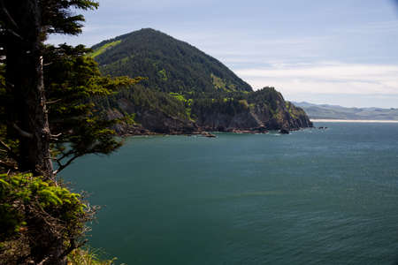 Smugglers Cove from Cape Falcon Trail in Oswald West Oregon State Park  4013