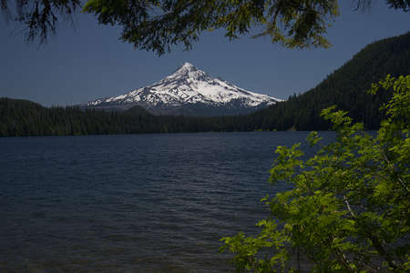 Lost Lake in the Mount Hood National Forest of Oregon 4047 Imagens