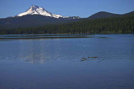 Olallie Lake with Mount Jefferson - one of the Waypoints on the Pacific Crest Trail in Oregon _5986
