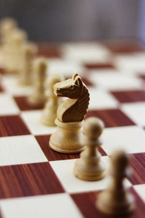 Pieces of chess that represents a particular social situation