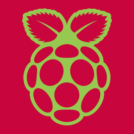 Raspberry green flat silhouette icon on red background