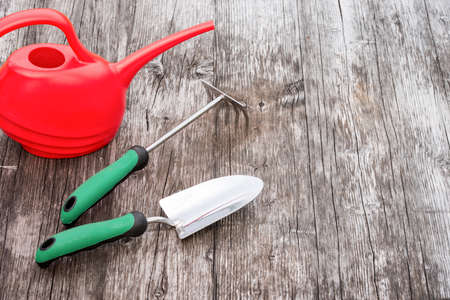 hark: Colorful gardening tools on a wooden table Stock Photo