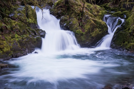 Waterfall near Lake Quinault in the Olympic National Forest, Washington