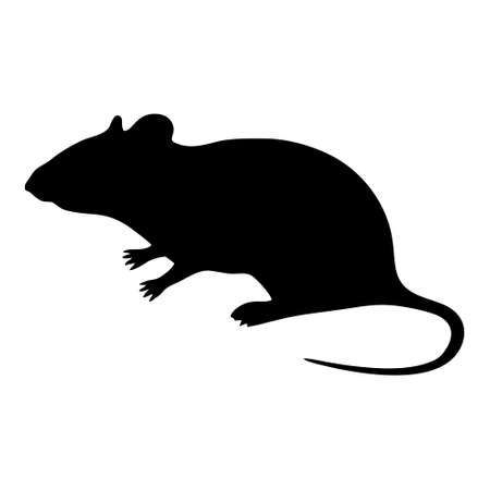 Rat icon isolated on white background. Rat icon in trendy design style. Rat vector icon modern and simple flat symbol for web site, mobile, logo, app, UI.