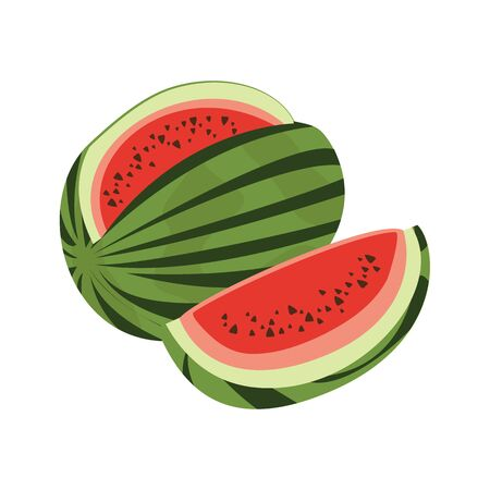 Watermelon vector isolated on white background
