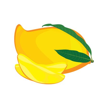 Mango vector isolated on white background