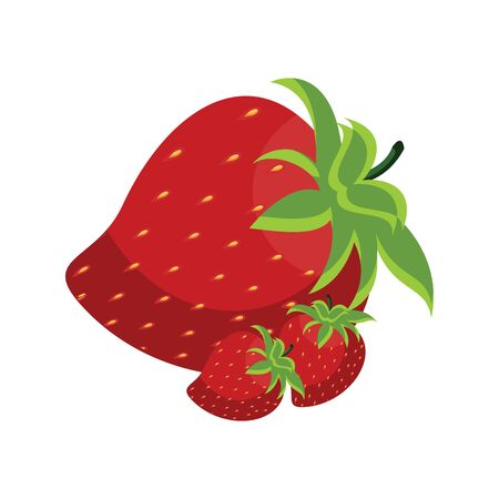 Strawberries vector isolated on white background