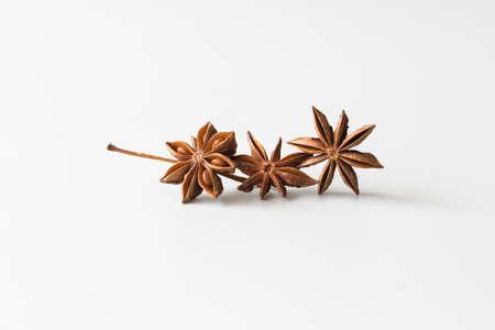 anise star: Spice star anise