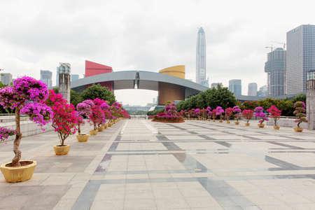 civic: shenzhen civic centre