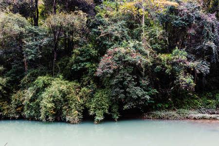 waterside: Waterside Woods