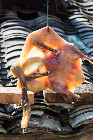 preserved: preserved duck