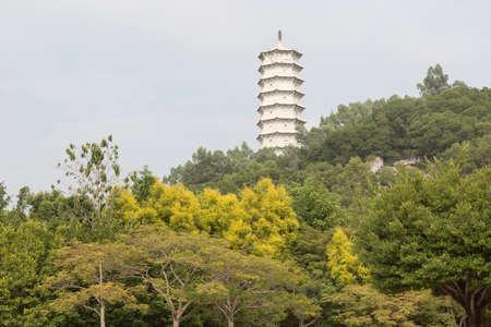 blessedness: Shenzhen Garden  Flower Expo Park Stock Photo