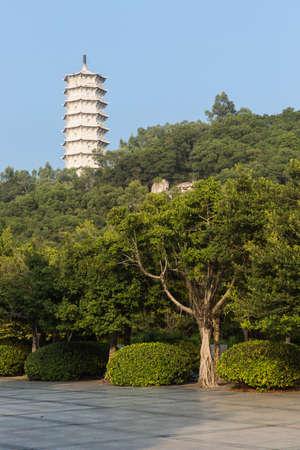 blessedness: Shenzhen Garden  Flower EXPO Park