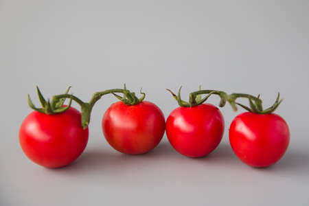 tomatoes in a row Stock Photo