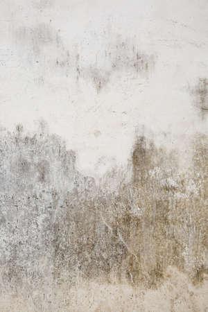 stucco house: Stucco wall of an obsolete house