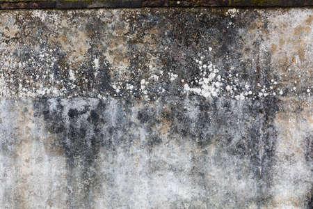 textured wall: wall textured