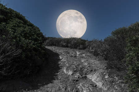 mountain road and full moon at night. Isles Sanguinaires, small archipelago near Ajaccio ,Corsica, France