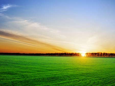 Configuración de Sun sobre un paisaje hermoso campo Foto de archivo
