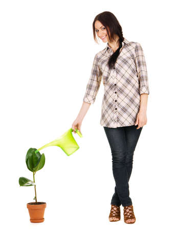 Beautiful young woman watering a plant, white background photo