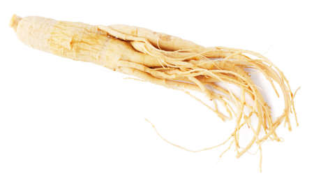 eastern health treatment: Ginseng (redberry) root, isolated on white background