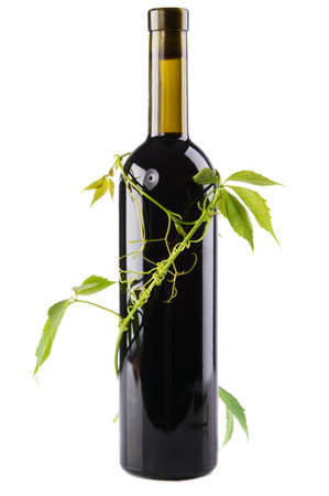 Bottle of wine in green leaves. white background Stock Photo - 9672615