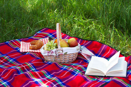Picnic basket standing over a green grass background photo
