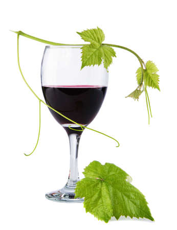 Glass of red wine with a green leaf on top Stock Photo - 10196818