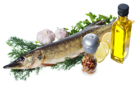 Raw pike with cooking ingredients isolated on white background photo