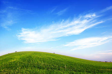 Blank landscape of green grass and blue sky photo