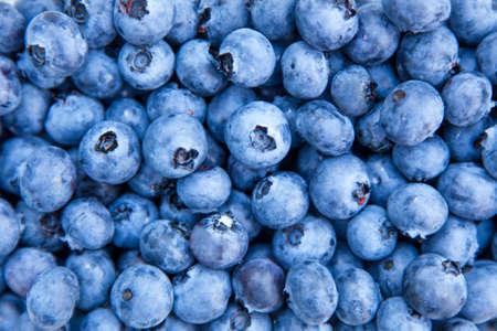 Blueberries macro photo