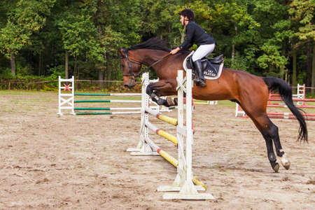 eventing: Wroclaw, Poland:  SEPT 29 - Horse trials in Wroclaw