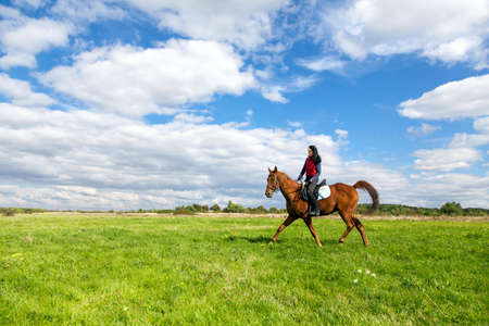 horseback riding: Young woman riding a horse in the countryside