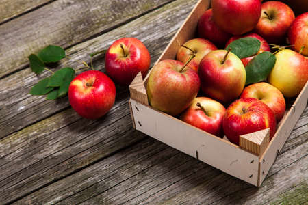 Fresh red apples in a wooden crate photo