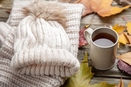 tea cosy: Warm clothes and a cup of tea on autumn day Stock Photo