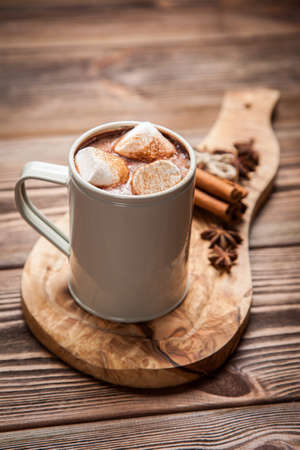 hot beverage: Cocoa drink with marshmallows and cinnamon