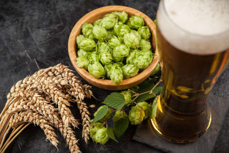 Beer glass with malt and hops, dark background Stock Photo