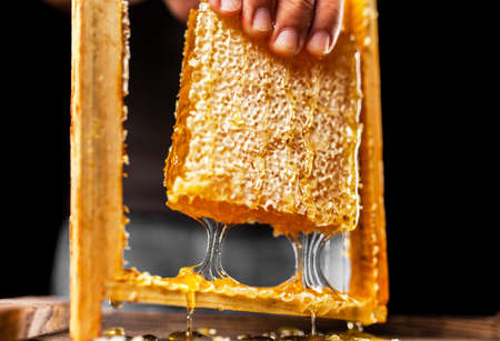 Honeycomb in a wooden frame Stock Photo