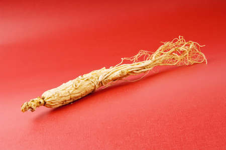the ginseng on the red background photo