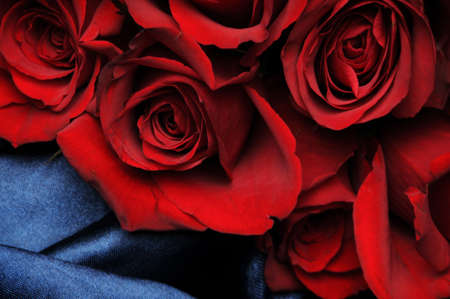 Red roses on blue satin photo