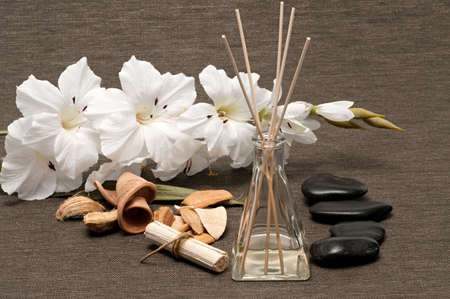 Aromatherapy diffuser, scented wood pieces, rocks and flower Banco de Imagens