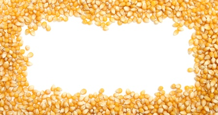 corn frame with a white space in the center photo