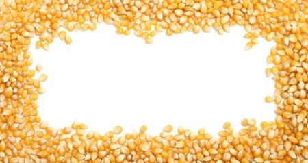 corn yellow: marco de ma�z con un espacio en blanco en el centro