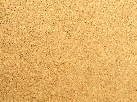 closeup of a cork board photo